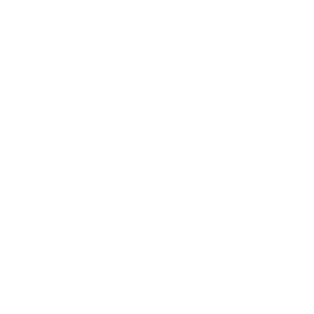 OrthoGrid Systems, Inc.